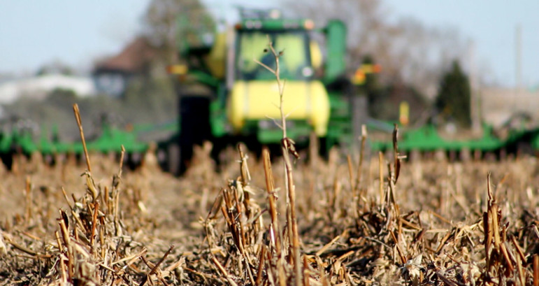 Cover crops are normally planted after harvest and grow until the next planting season. The longer cover crop grow, the more benefits they provide in the soil by adding carbon or nitrogen.